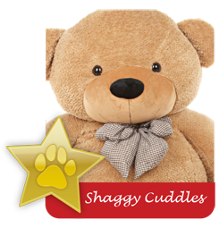 Shaggy Cuddles famous teddy bear