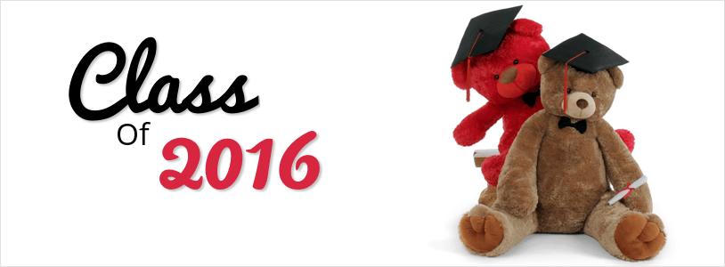 giant-teddy-brand-graduation-teddy-bears.png