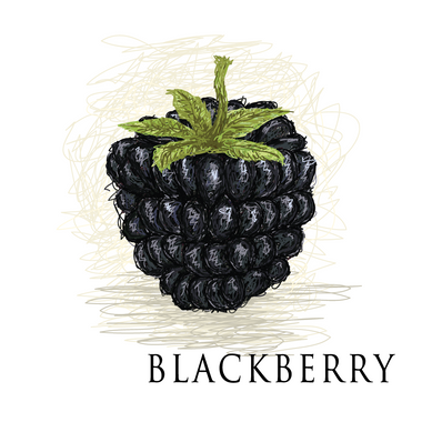American Eliquid Store Blackberry Eliquid
