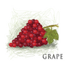 American Eliquid Store Grape Eliquid