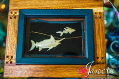 Framed Flying Fish BRF109