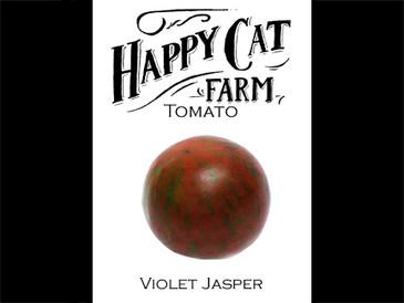 Violet Jasper
