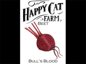 Bull's Blood Beet