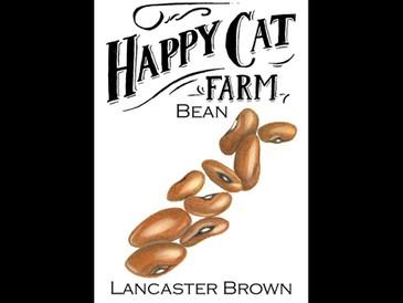 Lancaster Brown Bean