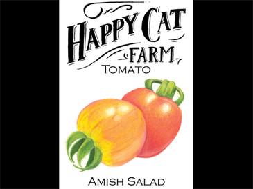 Amish Salad
