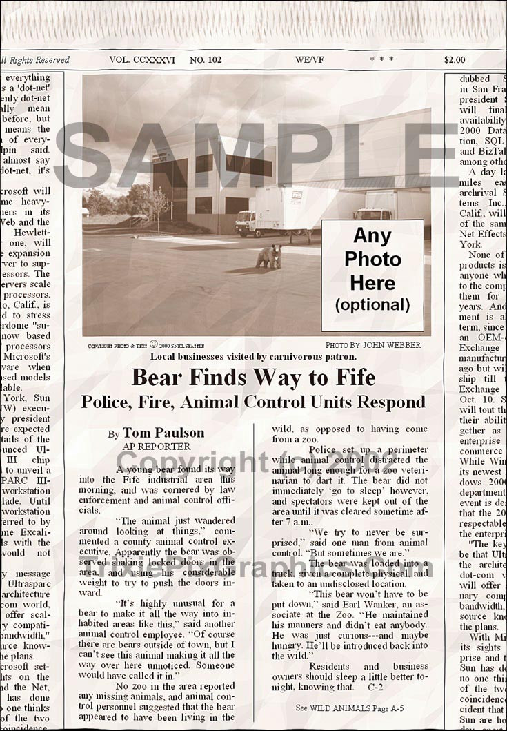 Fake Joke Newspaper Article BEAR FINDS WAY TO FIFE