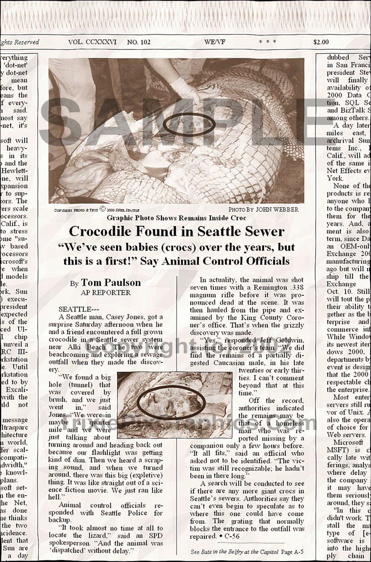 Fake Joke Newspaper Article CROCODILE FOUND IN SEATTLE SEWER