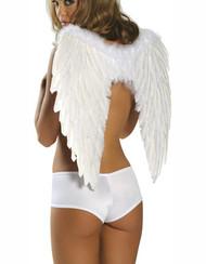 白色的羽毛天使的翅膀