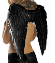 Black Feather Fallen Angel Wings