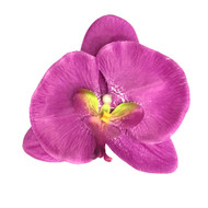 Purple Tropical Moth Orchid Realistic Flower Hair Clip