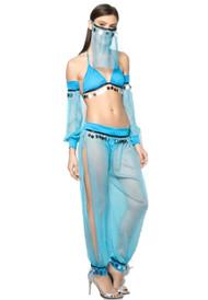 Arabian Night Blue Sheer Belly Dancer Costume