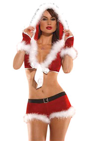Miss Santa Clause Costume