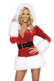 Christmas Snow Queen Santa Costume