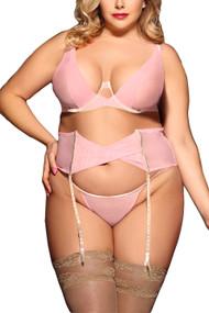 Katiya Pink Sheer Bra Garter Lingerie Plus Size Set
