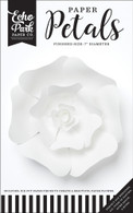 Small White Rose