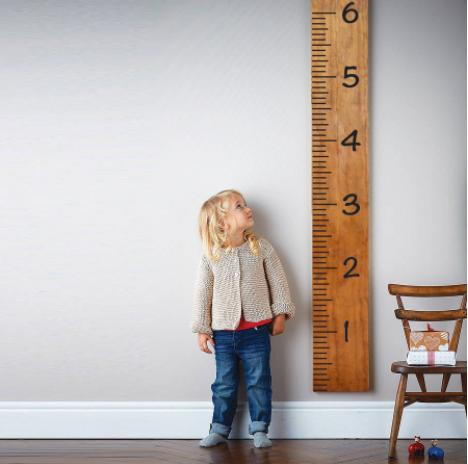 Growth Chart Wall Decal Sticker