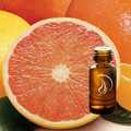Grapefruit Oil - 1/2 Ounce