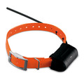 Garmin DC40 Collar
