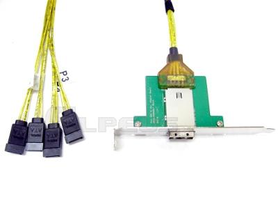 Mini SAS Adapter