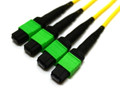 4x MTP/MPO to 4x MTP/MPO Plenum Trunk Cable