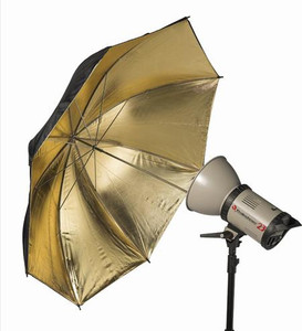 Black & Gold Umbrella 110cm - 8mm shaft