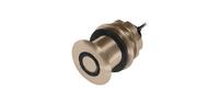 Raymarine B17 Transducer