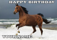 Brown Horse Birthday Card