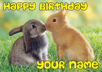 Rabbits Kissing Birthday Card