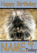 Porcupine Personalised Birthday Card