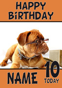 Boxer Dog Glasses Dogs And Puppies Happy Birthday