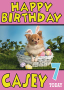 Puppy In Easter Basket Birthday Card