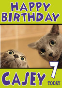 Shocked Kittens Funny Birthday Card
