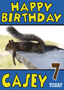 Sunbathing Squirrel Funny Birthday Card