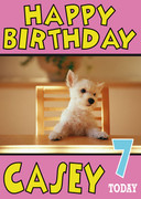 Westie Puppy Cute Birthday Card