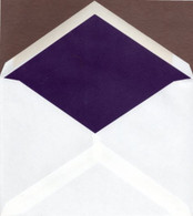 4-bar Pointed Flap Envelope Liners