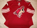 Phoenix Coyotes 2007-08 Maroon Martin Hanzal Edge 1.0!!
