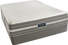 Scott Plush Hybrid Mattress