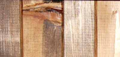 pine-plank.jpg
