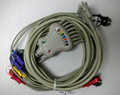 Accessories ECG Cable #19110