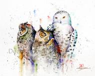OWL TRIO