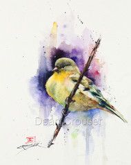 """NESTLED IN"" limited edition signed and numbered goldfinch bird print from an original watercolor painting by Dean Crouser. Edition limited to 400 prints."