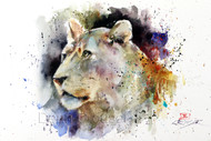 """LIONESS"" limited edition signed and numbered lion print from an original watercolor painting by Dean Crouser. Edition limited to 400 prints."