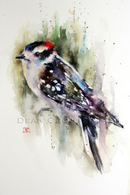 DOWNY WOODPECKER signed and numbered limited edition woodpecker bird print from an original watercolor painting by Dean Crouser. Edition limited to 400 prints.