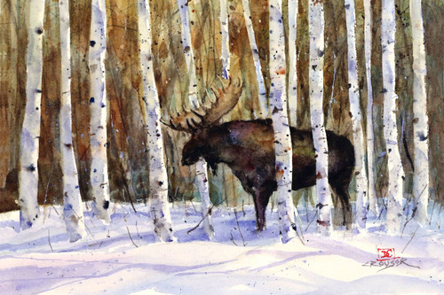 """""""A MOMENT'S REST"""" limited edition moose print from an original watercolor painting by Dean Crouser. Scene depicts a bull moose taking a breather in a thicket of birch trees. be sure to visit Dean's other animal, bird and wildlife art! Signed and numbered, edition limited to 400 prints."""
