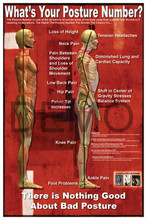 What's Your Posture Number? poster