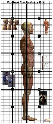posture grid,posture chart,posture analysis