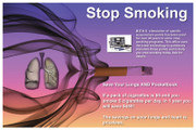 Stop Smoking Protocols and Marketing Included in Part Two Only