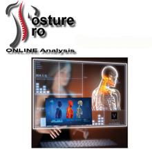 Posture Pro Online Analysis Setup