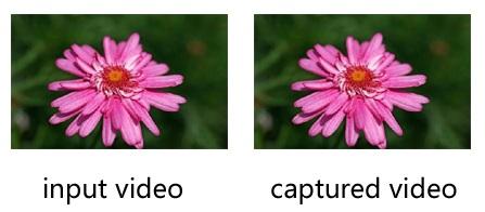 accurate-image-color-en-1.0.jpg