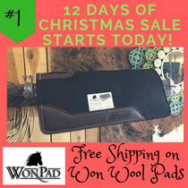 #1 of 12 days of Christmas  Special (Won Wool & Free Shipping)